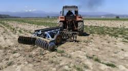 Βήμα-βήμα η συμπλήρωση του Ε3 για όσους δηλώνουν αγροτικό