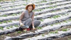 '진짜 나'로서 자유롭게 | 정읍에서 농사짓는 홍정희