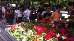 Tunisie: Des élèves plantent des fleurs à l'avenue Habib