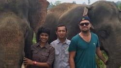 글로벌 스타들이 '코끼리 구하기'에 나서고