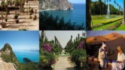 Des mesures incitatives pour promouvoir la destination Algérie à l'échelle