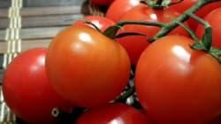 Les fruits et légumes marocains ont la cote en