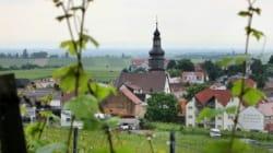 Allemagne: le village des ancêtres de Donald Trump fait profil