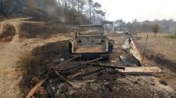 Τεράστια η οικολογική καταστροφή στη