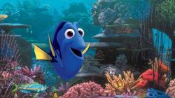 Ce poisson est le meilleur exemple pour comprendre les troubles de la mémoire
