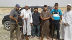 Au Maroc, des chiens abattus puis brûlés dans une décharge