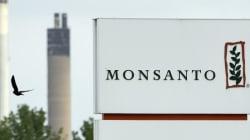 몬산토가 유기농 식품 비판 연구와 기사를 학계와 언론에