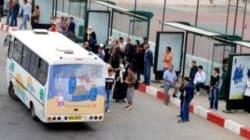 Les transport seront assurés à Alger durant l'Aid El