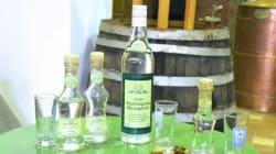 Αφιέρωμα στη Λέσβο: Ματαρέλλη, το ούζο που φτιάχνεται από μέλι και