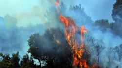 Πυρκαγιές σε εξέλιξη σε Άνδρο και