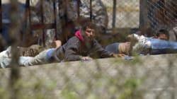 Αιματηρή εξέγερση σε φυλακή της Γουατεμάλα: Μεταξύ των νεκρών τέσσερις αποκεφαλισμένοι και ένα μοντέλο που έκανε