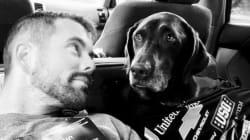 Το τελευταίο ταξίδι ενός άνδρα μαζί με τον άρρωστο σκύλο του στα πέρατα της