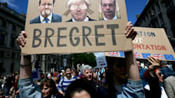 We Must Prevent Brexit To Protect Our Children's