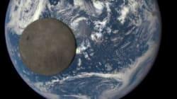 Cette belle photo de la Terre vue de l'espace vaut le