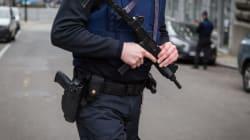 Deux frères soupçonnés de projets d'attentats interpellés en