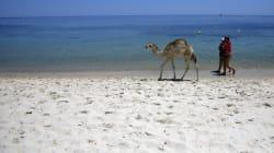 Touristes algériens en Tunisie: Enthousiastes ou