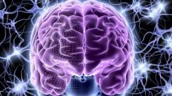 Super Brain, Super Genes And Alzheimer's - Dr. Rudy Tanzi Interview (Part