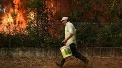 Ζητά βοήθεια η Πορτογαλία ενώ τεράστιες πυρκαγίες συνεχίζουν να κατακαίουν στο βορρά και στο νησί