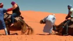 90 day fiance: La télé-réalité américaine se déroulant au Maroc qui va vous faire