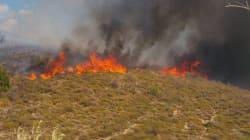 Πυρκαγιές στη Δράμα και στην Καλαμπάκα. Υπό μερικό έλεγχο η φωτιά στην Παλαιομάνινα