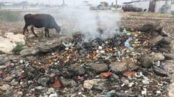 Pourquoi les plages de Sidi Kaouki sont-elles si