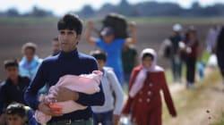 Μάρκους Ζέντερ:«Nα απελαθούν εκατοντάδες χιλιάδες