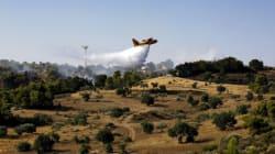 Φωτιές σε Ηλεία και