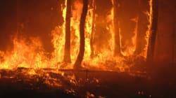 Un feu de forêt près de Chefchaouen