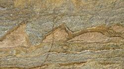 지구에서 가장 오래된 화석의 발견은 외계생명체 연구의 실마리를 줄