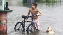 Etats-Unis: l'ouragan Hermine balaye le sud-est, un mort en