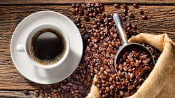 Ο καφές ίσως να έχει εκλείψει μέχρι το 2080, σύμφωνα με αυστραλιανή