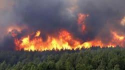 Trente individus devant la justice pour les incendies de forêts qui ont touché le nord du