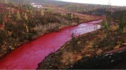 Η βιομηχανία Norilsk Nickel παραδέχεται τελικά ότι ευθύνεται για το κόκκινο χρώμα του ποταμού στη