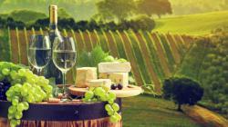 Le Maroc parmi les pays producteurs de vin