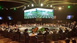 COP22: L'agriculture africaine veut se faire