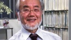 이번 노벨상 수상자가 세포의 자가 포식을 발견한 그 '과정'이 가장