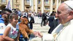 Όταν ο Πάπας συνάντησε το «πιο χαμογελαστό σκυλί του