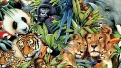 Μπορείτε να εντοπίσετε τα 29 ζώα στη