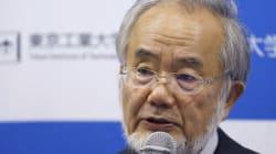 일본 노벨상 수상자가 20년 후엔 '일본에서 안 나올것'이라고 말한