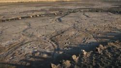 현생인류의 초기 발자국이