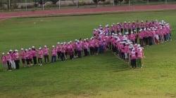 Lutte contre le cancer: plus de 2.000 participantes à une course à