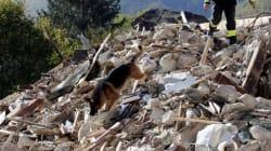 Italie: nouvelle forte secousse sismique dans le centre du