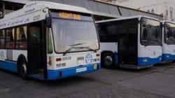 Commémoration du 1er novembre 1954: gratuité des transports mardi dans les bus de