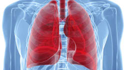 It's COPD Awareness Month; Time To Stop Smoking Cigarettes, Whether You're A Mouse, A Dog Or A