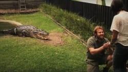 Il fait sortir un crocodile de l'eau pour faire sa demande en