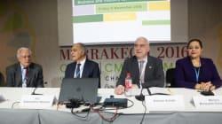 À la COP22, les entreprises se penchent sur les investissements