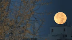 11월 14일, 한국에서 관측된 '슈퍼문'의