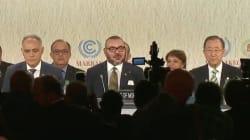 Mohammed VI lance le Prix pour l'environnement, doté d'un million de