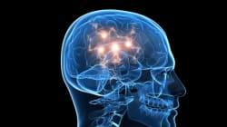 Χρησιμοποιούμε στ΄αλήθεια μόνο το 10% του εγκεφάλου μας; Δείτε πώς λειτουργεί αυτό το θαυμαστό