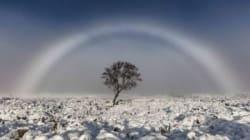 Μια σπάνια και μαγευτική εικόνα: Το παγωμένο λευκό ουράνιο τόξο στη